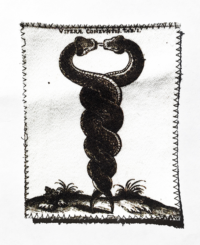 ENTWINED SNAKE PATCH